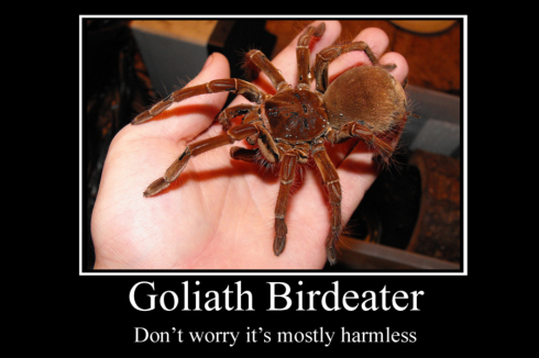 goliath 2